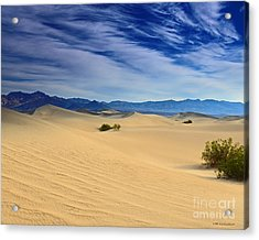 Golden Sand Dunes Death Valley National Park Acrylic Print