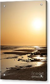 Golden Sunset- California Coast Acrylic Print