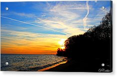 Acrylic Print featuring the photograph Golden Sunset by Davandra Cribbie