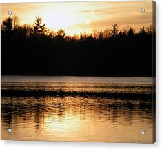 Acrylic Print featuring the photograph Golden Sunset by Penny Hunt