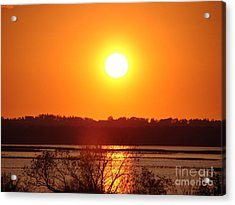 Golden Sunset Acrylic Print