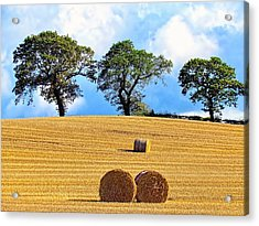 Golden Three Plus Thee Acrylic Print by Patrick MacRitchie