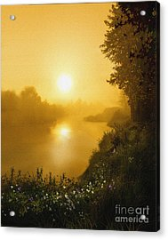 Golden View Acrylic Print by Robert Foster