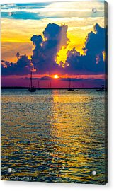 Golden Waters Acrylic Print by Shannon Harrington