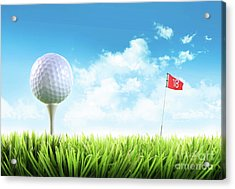 Golf Ball With Tee In The Grass  Acrylic Print by Sandra Cunningham