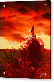 Gone South Acrylic Print by Suni Roveto