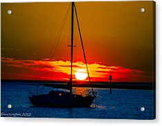 Acrylic Print featuring the photograph Good Night by Shannon Harrington