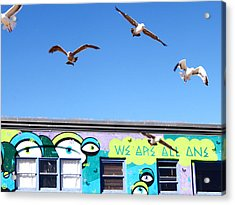 Good Vibes At Venice Beach Acrylic Print by Casey Berger