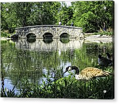 Acrylic Print featuring the photograph Goose And Bridge At Silver Lake by Tom Gort