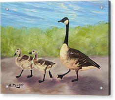 Goose Step Acrylic Print by Alan Mager