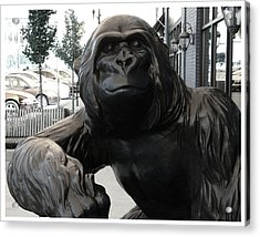 Gorilla On So Bend Street Acrylic Print