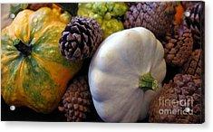 Acrylic Print featuring the photograph Gourds 6 by Deniece Platt