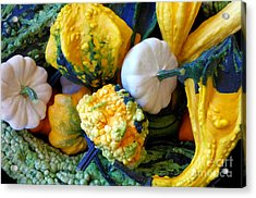 Acrylic Print featuring the photograph Gourds 8 by Deniece Platt