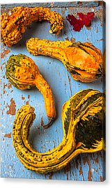 Gourds On Wooden Blue Board Acrylic Print by Garry Gay