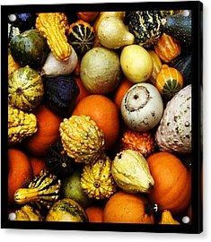 Gourds Acrylic Print