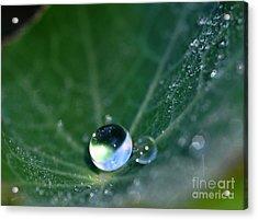 Gouttes D'eau Acrylic Print
