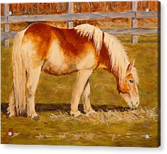 Acrylic Print featuring the painting Grahm by Joe Bergholm