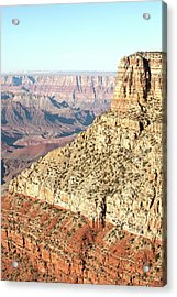 Grand Canyon At Sunset Acrylic Print by William Andrew