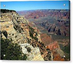Grand Canyon B Acrylic Print by Dottie Gillespie