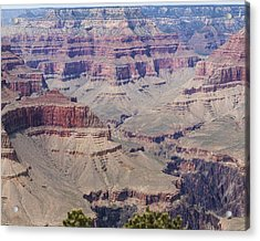 Grand Canyon Colorado River Page 7 Of 8 Acrylic Print by Gregory Scott