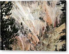 Acrylic Print featuring the photograph Grand Canyon Colors Of Yellowstone by Living Color Photography Lorraine Lynch