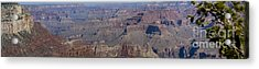 Grand Canyon From South Rim Acrylic Print by Tim Mulina