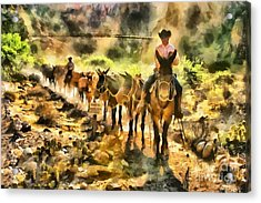 Grand Canyon Mules At The River Acrylic Print