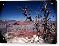 Acrylic Print featuring the photograph Grand Canyon Number One by Lon Casler Bixby