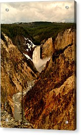 Grand Canyon Of The Yellowstone Acrylic Print by Ellen Heaverlo