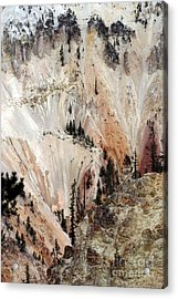 Acrylic Print featuring the photograph Grand Canyon Of Yellowstone Vertical by Living Color Photography Lorraine Lynch