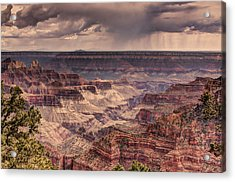 Grand Canyon Acrylic Print by Tracy Lynn Hart