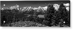 Acrylic Print featuring the photograph Grand Tetons by Dan Wells