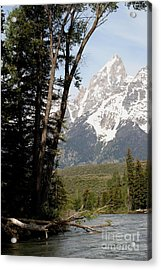 Acrylic Print featuring the photograph Grand Tetons Vertical by Living Color Photography Lorraine Lynch