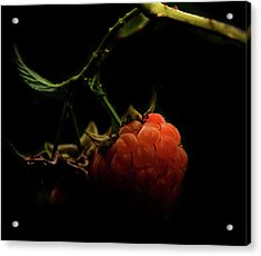 Grandmas Berries Acrylic Print by Empty Wall