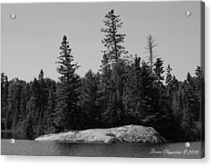 Grandpa's Point Acrylic Print by Steven Clipperton