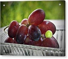 Grapes Acrylic Print by Gwyn Newcombe