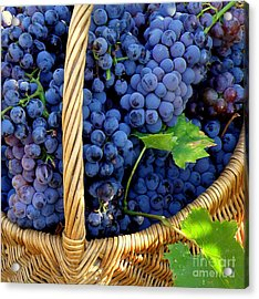 Grapes In A Basket Acrylic Print by Lainie Wrightson