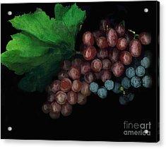 Grapes In Black Acrylic Print by Casey DiDonato
