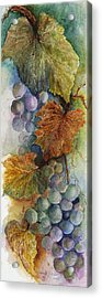 Grapes Iv Acrylic Print by Judy Dodds