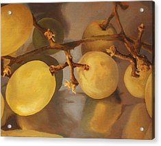 Grapes On Foil Acrylic Print