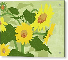 Graphic Illustration Of Sunflowers Acrylic Print