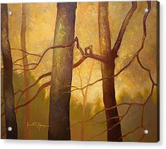Graphic Trees Acrylic Print by Jonathan Howe