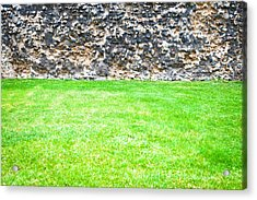 Grass And Stone Wall Acrylic Print by Tom Gowanlock