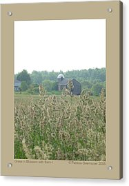 Grass In Blossom With Barn-i Acrylic Print by Patricia Overmoyer