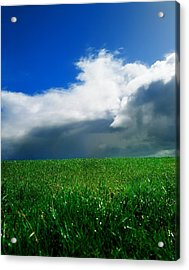 Grassy Field, Ireland Acrylic Print by The Irish Image Collection