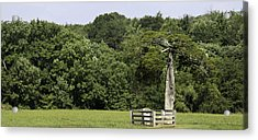 Grave Of Lafayette Meeks Appomattox Virginia Acrylic Print by Teresa Mucha