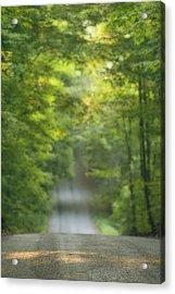 Gravel Road, Niagara Region, Pelham Acrylic Print by Darwin Wiggett