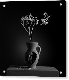 Gray Variations - Roots Acrylic Print by Ovidiu Bastea