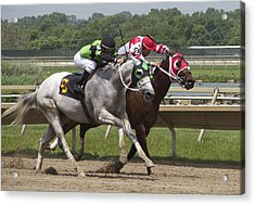 Acrylic Print featuring the photograph Gray Vs Bay by Alice Gipson