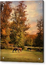 Grazing In Autumn Acrylic Print by Jai Johnson
